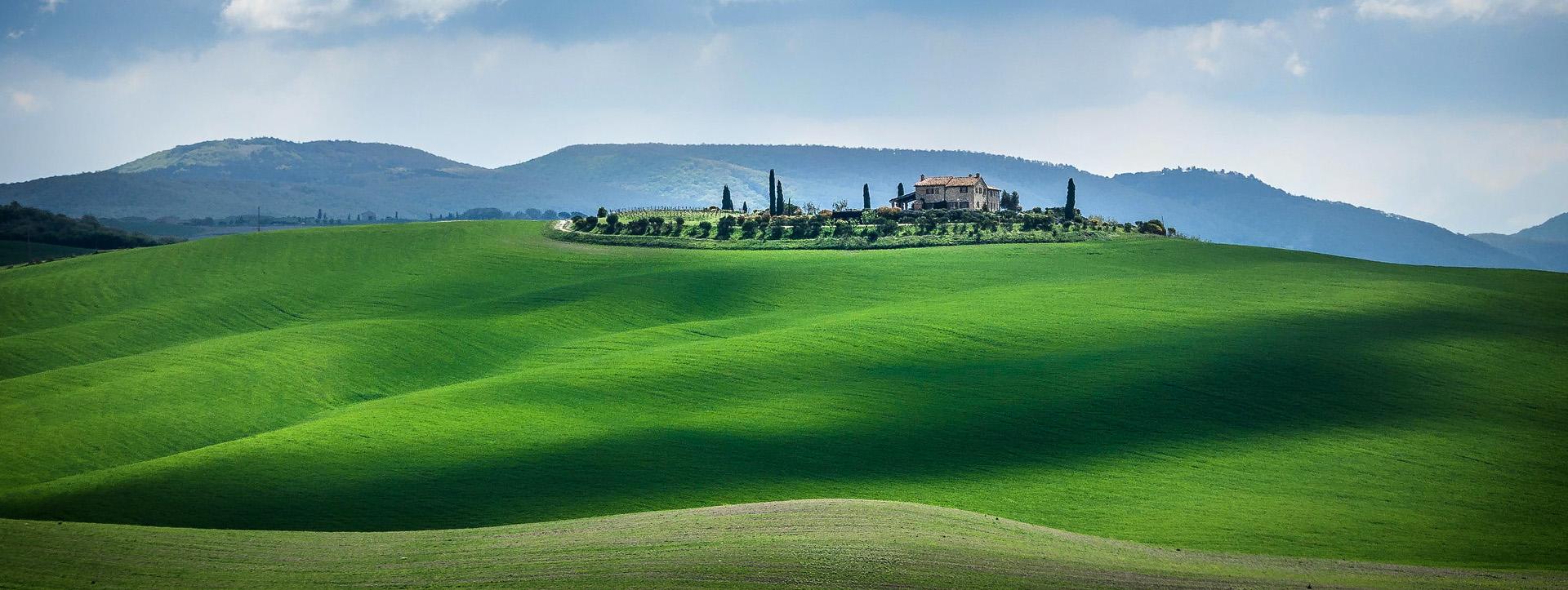 Toscana Fields